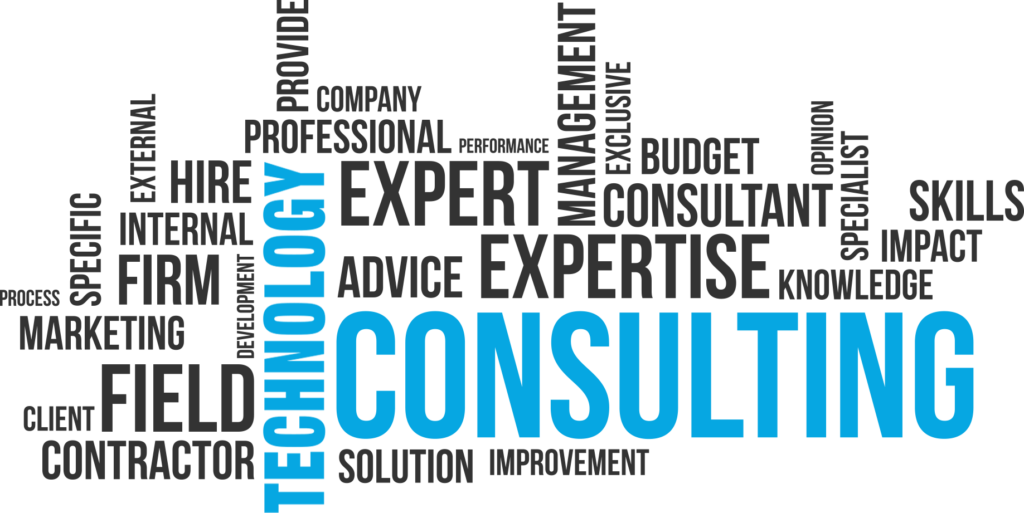 Strategic Technology Consulting